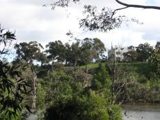 Banyule Homestead, looking from the lagoon. Photograph: G. Speers 2011